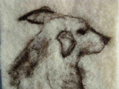 Flo - drawing with wool