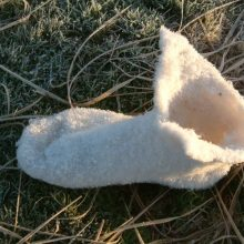 Felt Foot in frost, Dartmoor