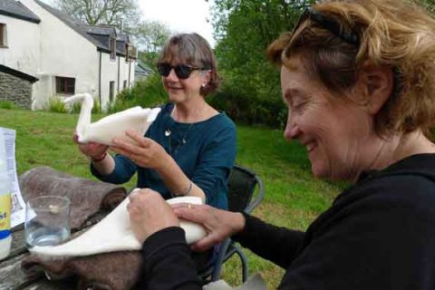 Jane and dot making swans