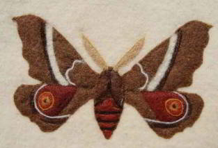 Moth - Felt wall hanging