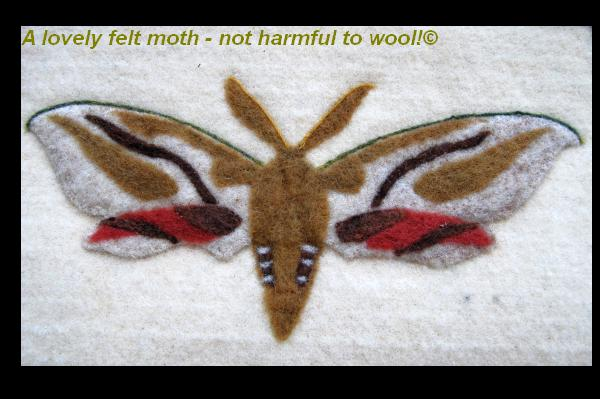 Moth wool felt wall hanging